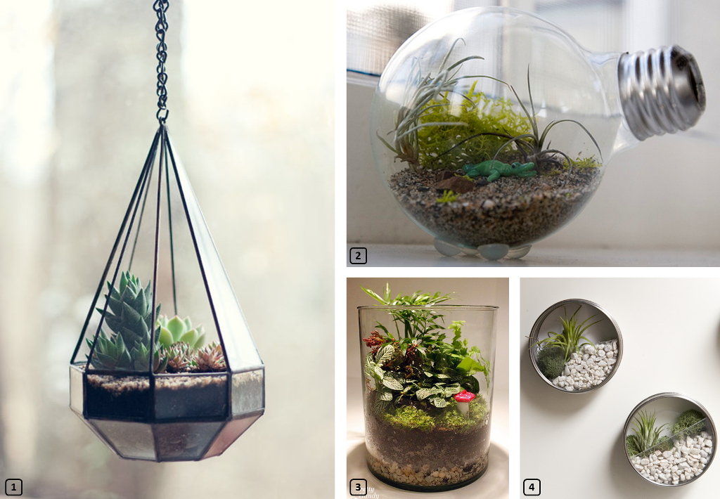 diy tutoriel facile pour cr er un terrarium bnbstaging le blog. Black Bedroom Furniture Sets. Home Design Ideas