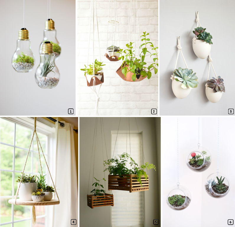 15 Suspensions Diy Originales Pour Les Plantes Bnbstaging Le Blog